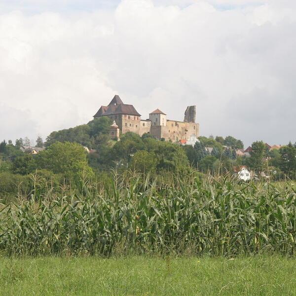 Zamek w Lipnicach nad Sázavou