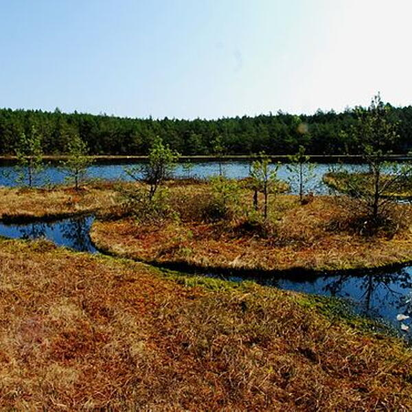 Jeziorka Kozie