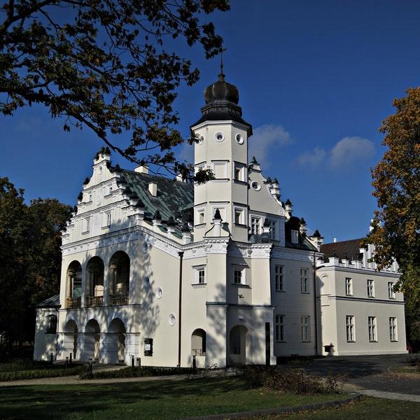 Pałac Grudzińskich