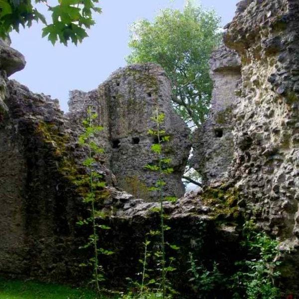 Sutton Valence Castle