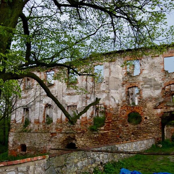 Ruiny Zamku w Pankowie