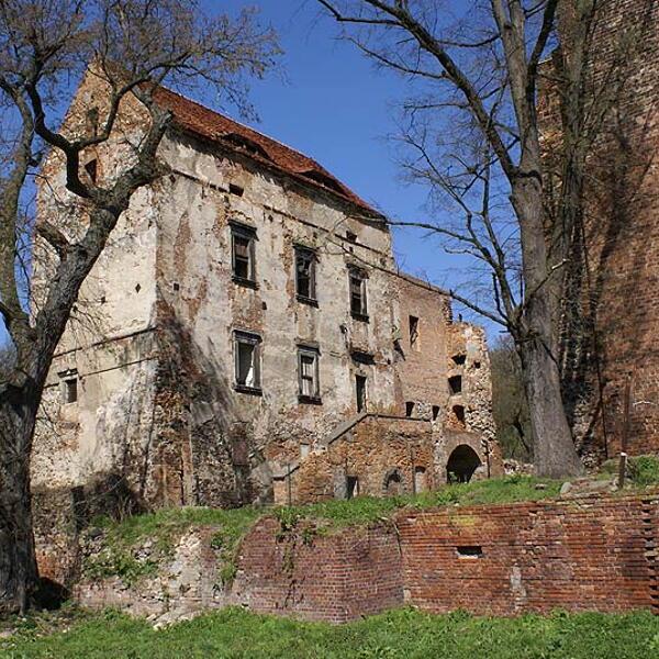 Zamek w Prochowicach