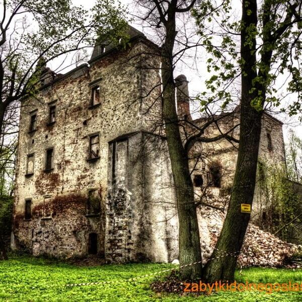 Riuny zamku w Chocianowcu